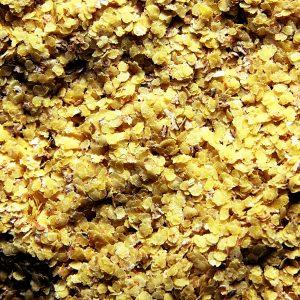 Zarodki pszenne świeże 1 kg